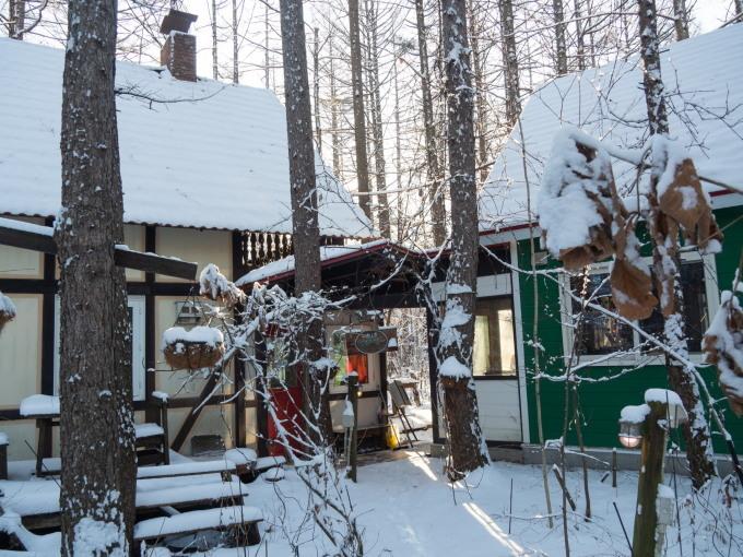 憧れの雪あるクリスマス・・エゾリス君とお祝いです。_f0276498_17230534.jpg