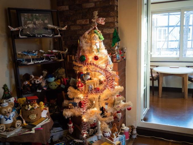 憧れの雪あるクリスマス・・エゾリス君とお祝いです。_f0276498_17231695.jpg