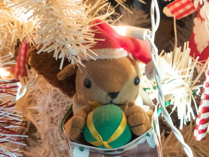 憧れの雪あるクリスマス・・エゾリス君とお祝いです。_f0276498_17232839.jpg