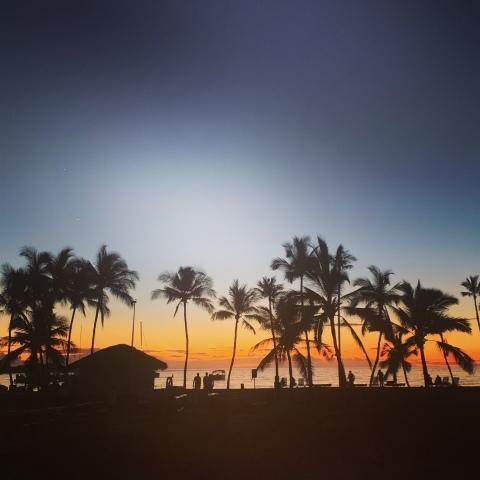 ハワイ島の時間 2019 - 1_d0167002_17135567.jpg