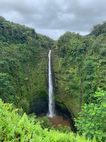 ハワイ島の時間 2019 - 1_d0167002_17265221.jpg