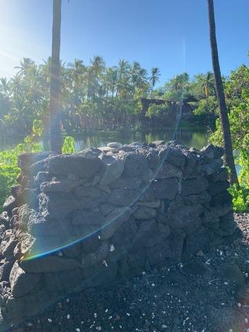 ハワイ島の時間 2019 - 1_d0167002_17364924.jpg
