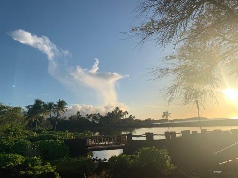 ハワイ島の時間 2019 - 2_d0167002_21031410.jpg