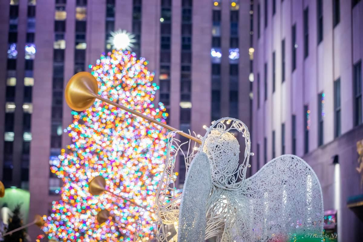 Merry Christmas 2019_a0274805_22334365.jpg