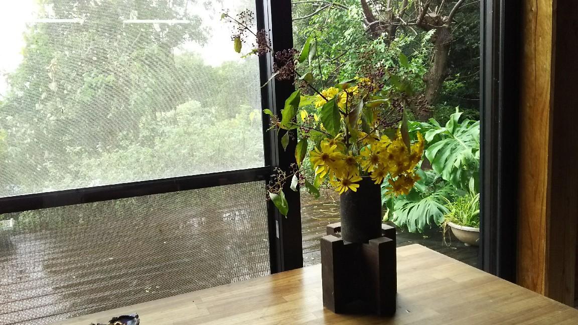 12月25日 紫式部と石蕗の花を。_a0204408_12434591.jpg