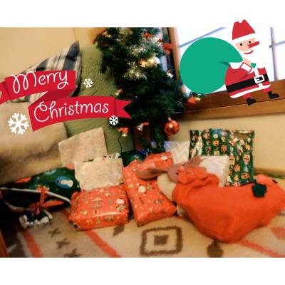Merry Merry X'mas✨_b0148714_20300422.jpg