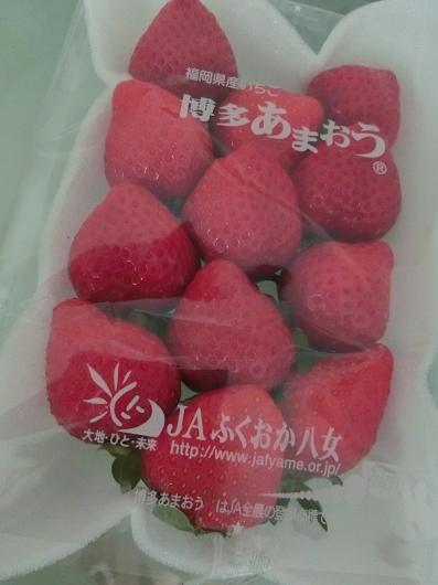 日本から届いたもの ☆ 12月_e0303431_17015546.jpg