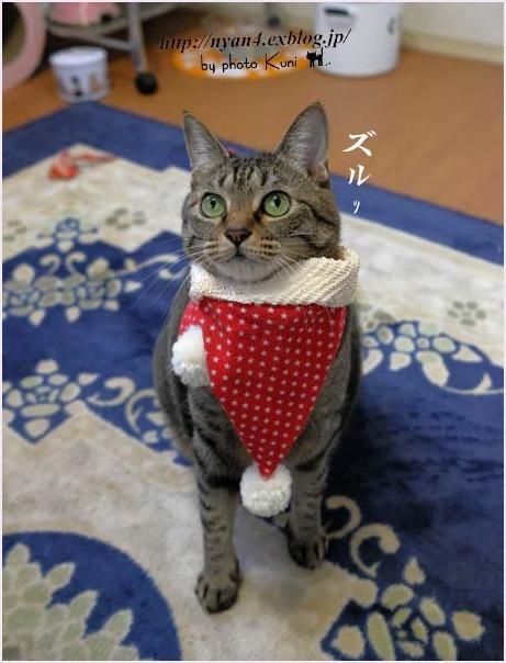 メリークリスマス!_f0166234_22342171.jpg