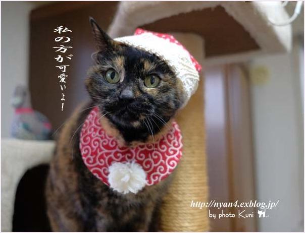 メリークリスマス!_f0166234_22343218.jpg