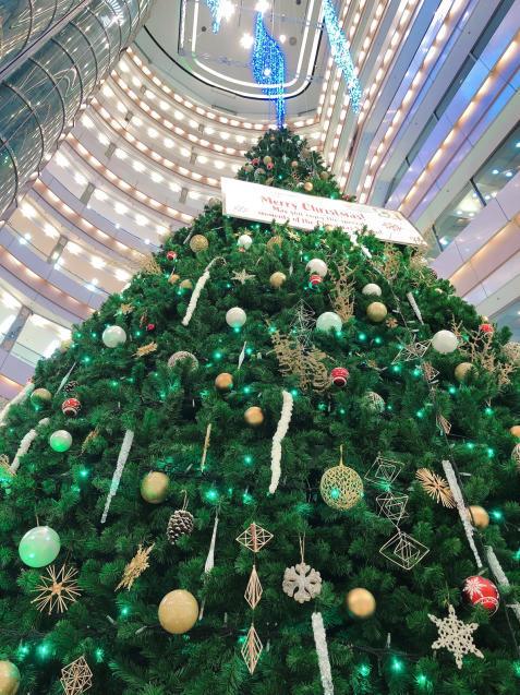 クリスマスランチで打ち合わせ バスクチーズケーキ_f0140145_13013145.jpg