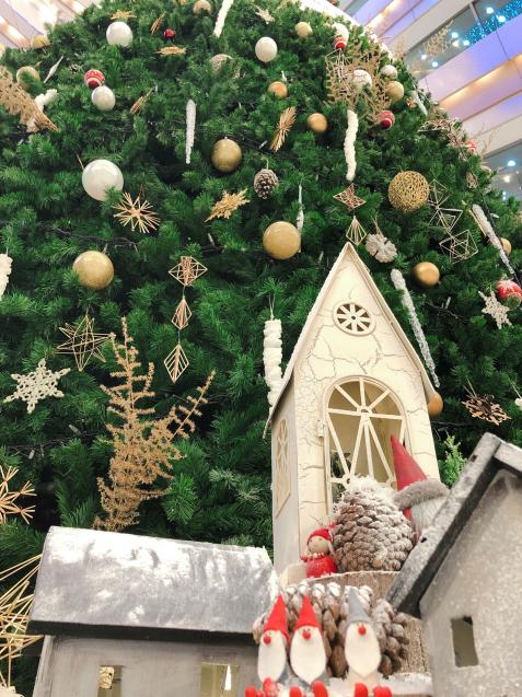 クリスマスランチで打ち合わせ バスクチーズケーキ_f0140145_13051160.jpg