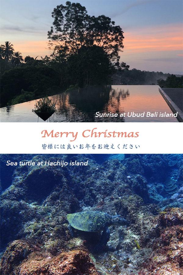 Merry Christmas!_e0104046_00552225.jpeg