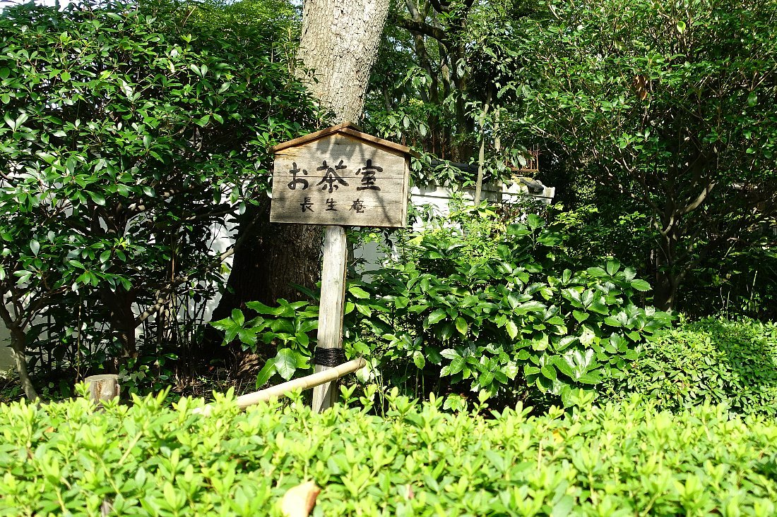 慶沢園(その2)_c0112559_08541371.jpg