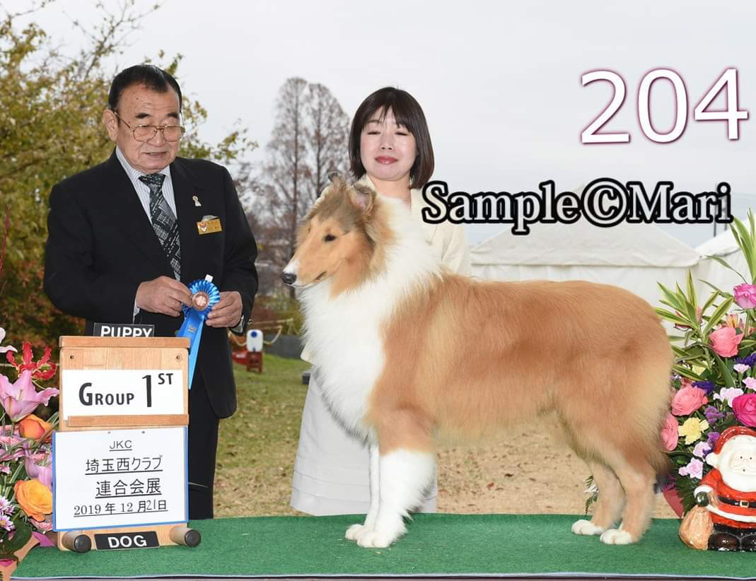 JKC埼玉インター_f0126965_20293654.jpg