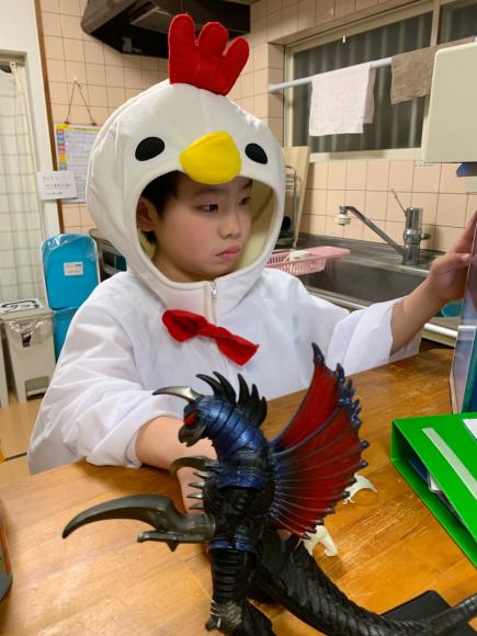 空前の鶏ブーム!?_d0227066_18372668.jpg