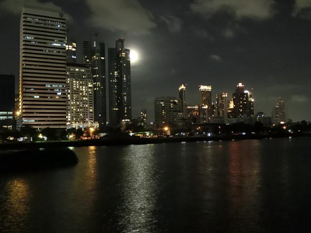 ベンチャキティ公園の夜さんぽ_f0189467_11074637.jpg