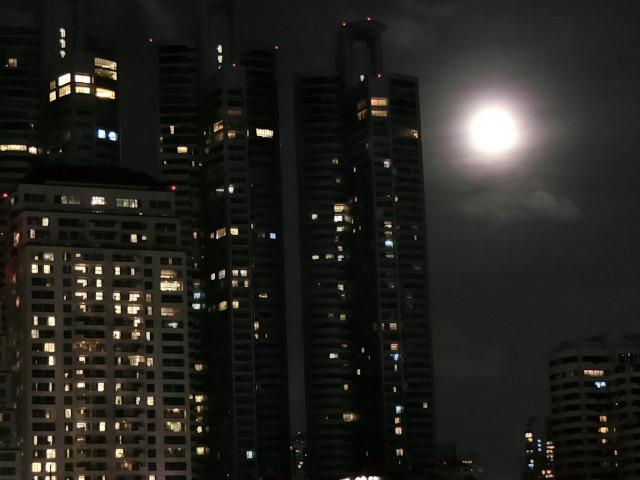 ベンチャキティ公園の夜さんぽ_f0189467_11100363.jpg