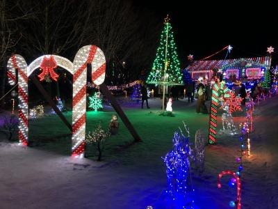 クリスマス・ライト 1_c0353373_04562201.jpg