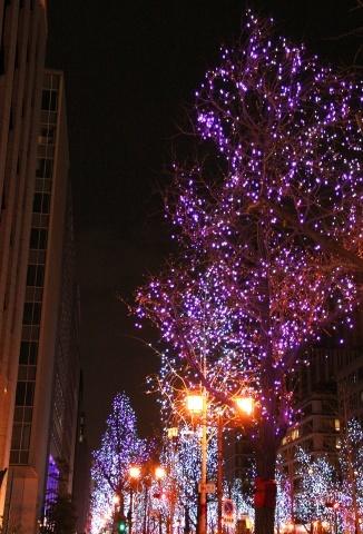 ◆クリスマスはイルミネーション_e0154682_23394263.jpg
