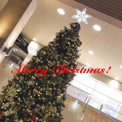 ☆★☆ Merry Christmas ☆★☆_f0209783_00042741.jpg