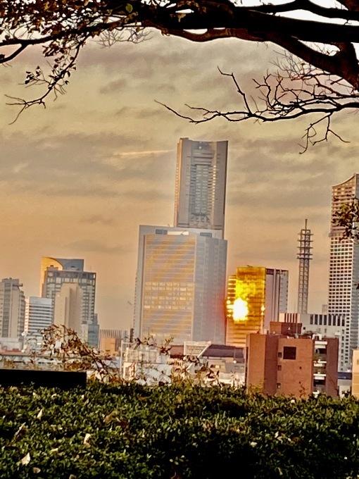 横浜山手西洋館 世界のクリスマス 2019_c0188784_21433101.jpg
