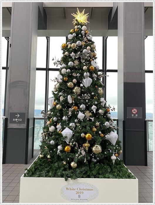 愛知県(名古屋周辺)でのお出かけ その4 ミッドランドスクエア42階の展望台へ 正真正銘のお上りさんで~す(*≧m≦*)ププッ (11月28日)_b0175688_00264119.jpg