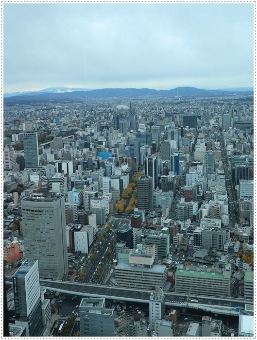 愛知県(名古屋周辺)でのお出かけ その4 ミッドランドスクエア42階の展望台へ 正真正銘のお上りさんで~す(*≧m≦*)ププッ (11月28日)_b0175688_00291470.jpg