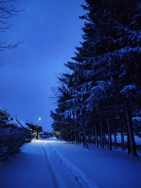 12月25日 今日の写真_b0103798_21583169.jpg