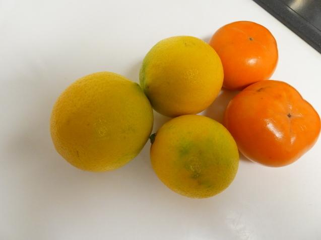 Lemon  /  koba_d0135801_22264255.jpg