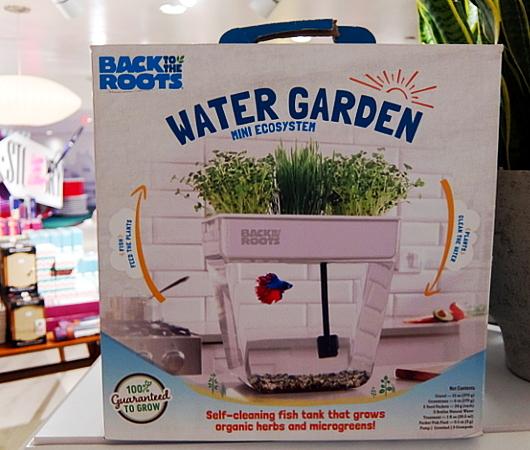 最新型キッチン菜園は、お魚も飼育できるエコシステム_b0007805_12331666.jpg