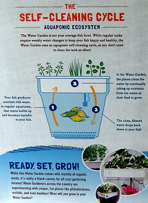 最新型キッチン菜園は、お魚も飼育できるエコシステム_b0007805_13015359.jpg