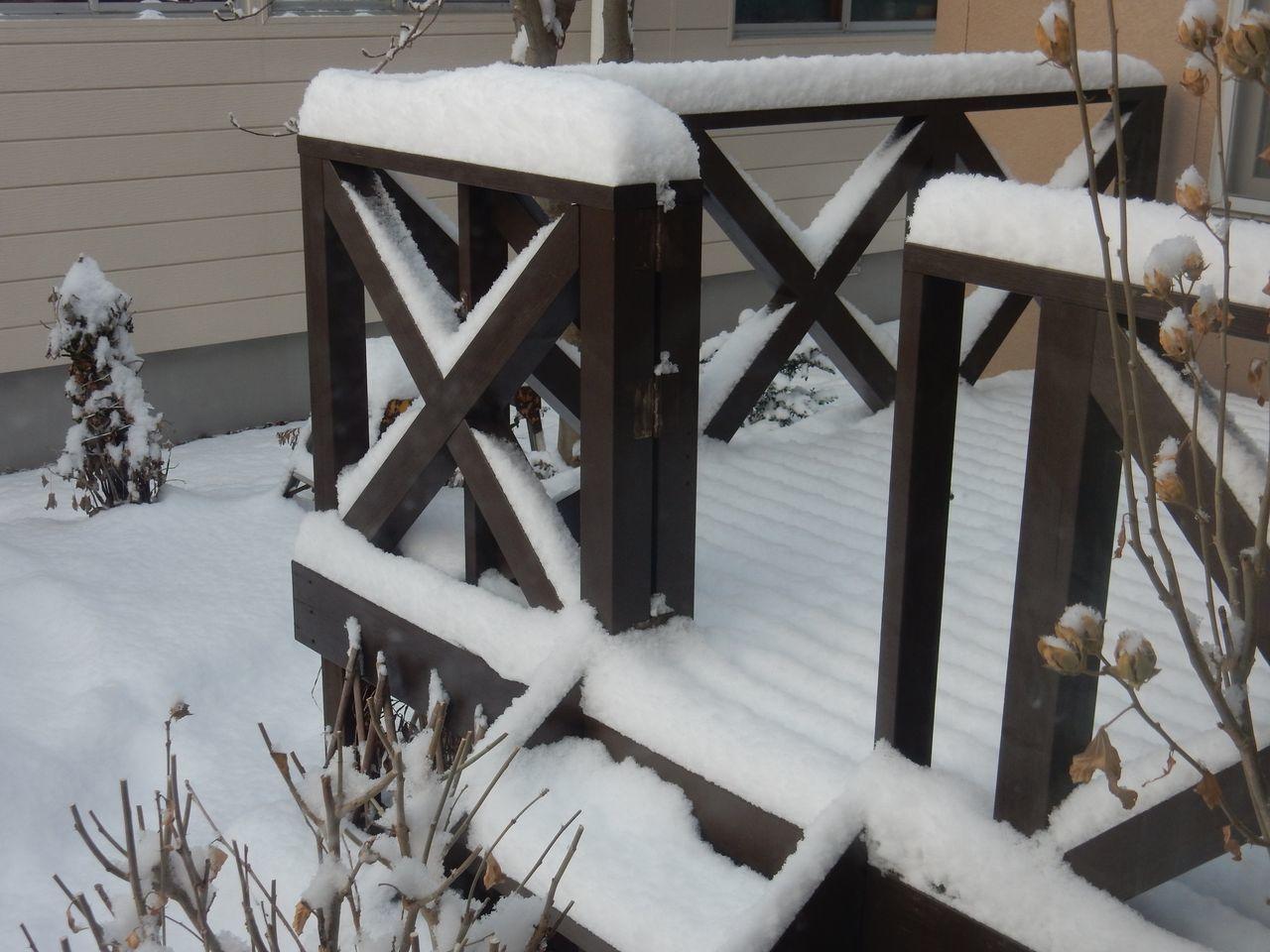 雪が積もるとホッとします_c0025115_21305555.jpg