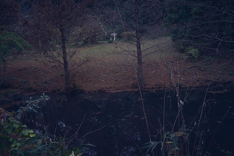 終末の庭で_a0214416_20121123.jpg