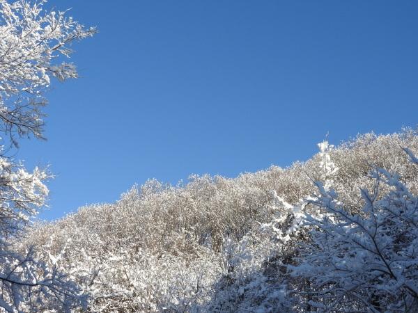 今週末の天気と気温(2019年12月26日):追記あり_b0174425_21441641.jpg