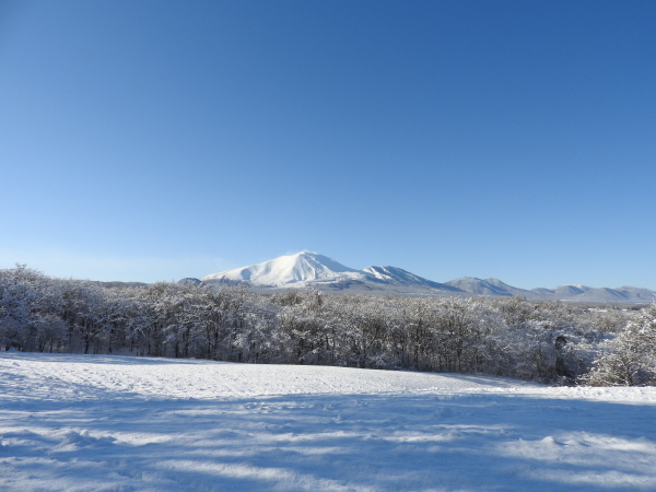 今週末の天気と気温(2019年12月26日):追記あり_b0174425_21450594.jpg