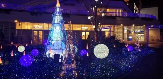 ♪令和元年★クリスマス&食模様(地元編)_d0162225_09463058.jpg