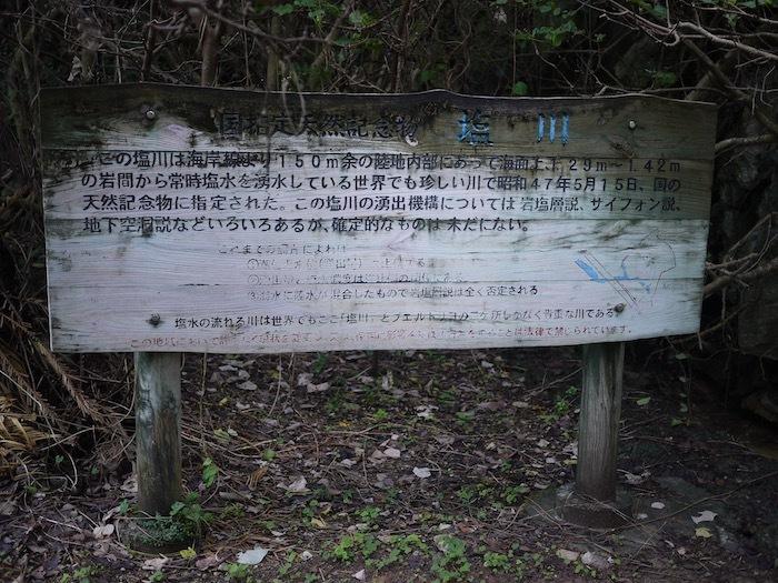 沖縄冬至越えの旅4 買わないという選択肢はないやろう_e0359436_11325961.jpeg