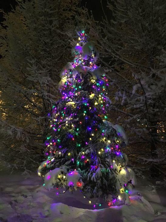 メリークリスマス!_b0135948_19305275.jpg