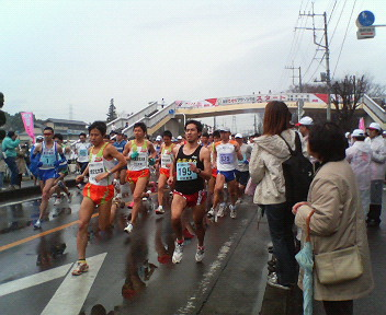 雨のち曇りの熊谷さくらマラソン_a0394451_15450931.jpg