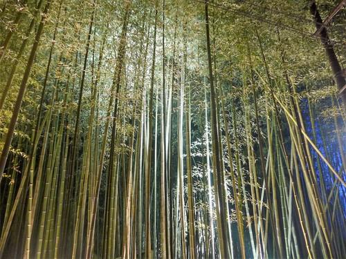 京都御所西「THE JUNEI HOTEL」に泊まる。_f0232060_14275364.jpg