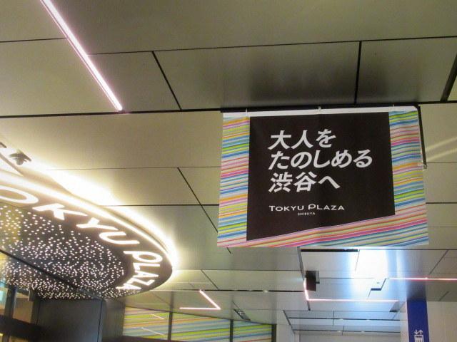 とんかつとんQ * SHIBUYA FUKURAS~生まれ変わった東急プラザ渋谷♪_f0236260_23312840.jpg