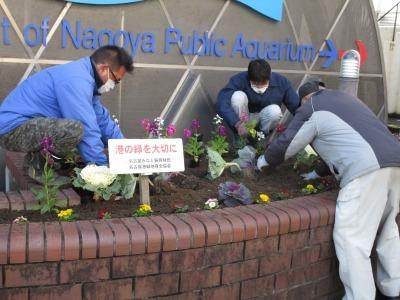 ガーデンふ頭総合案内所前花壇の植替えR1.12.23_d0338682_10355326.jpg