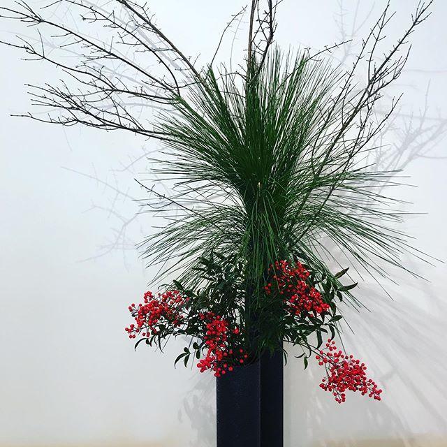 お正月飾り 🎍 坂本これくしょん_c0145608_15025004.jpg