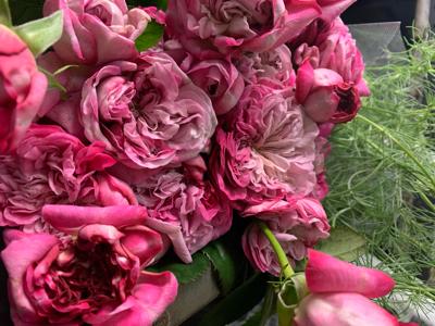 パリス♪  お正月花♪  ランいろは♪_e0128909_04335455.jpg