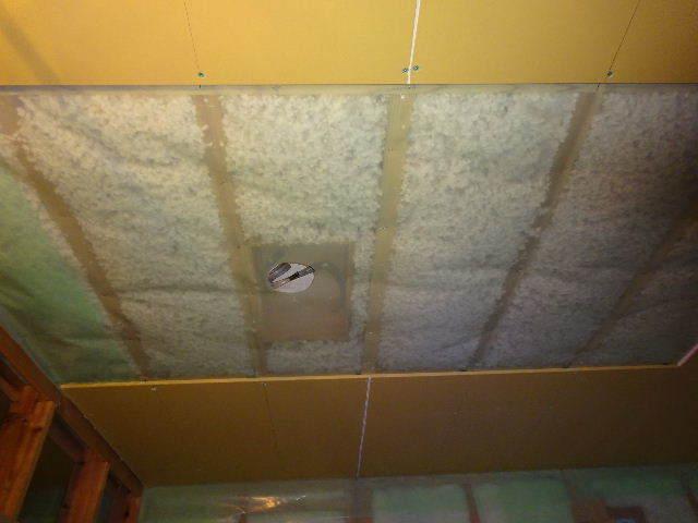 滝沢 穴口の家 大工工事進行中。_f0105112_04513888.jpg
