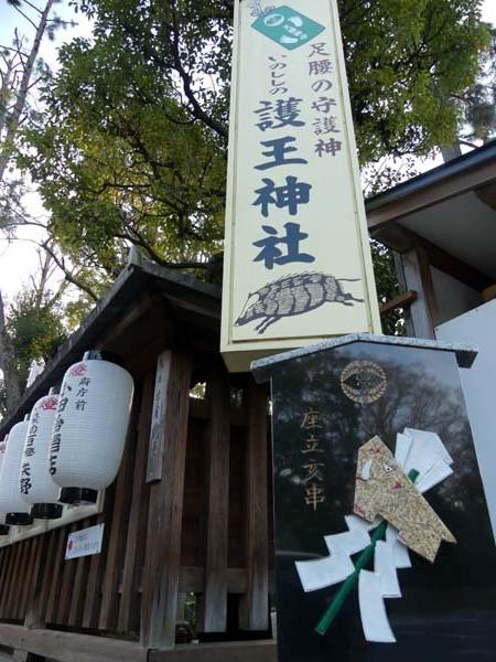 令和元年 亥年を送る 「護王神社」_e0048413_21493786.jpg