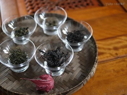 12月の中国茶五種のみ比べ_a0169924_22293885.jpg