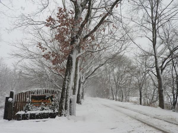 今週末の天気と気温(2019年12月26日):追記あり_b0174425_12061079.jpg