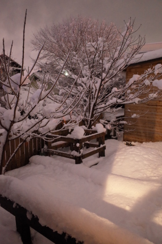 大雪~!_b0207642_17503472.jpg