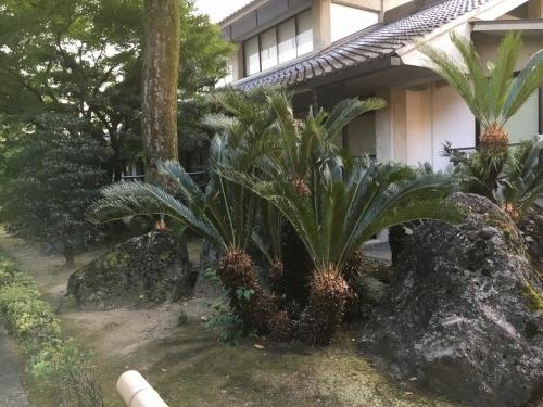 京都の旅\'19Ⅴ 京都裏千家訪問他_e0326953_18302726.jpg